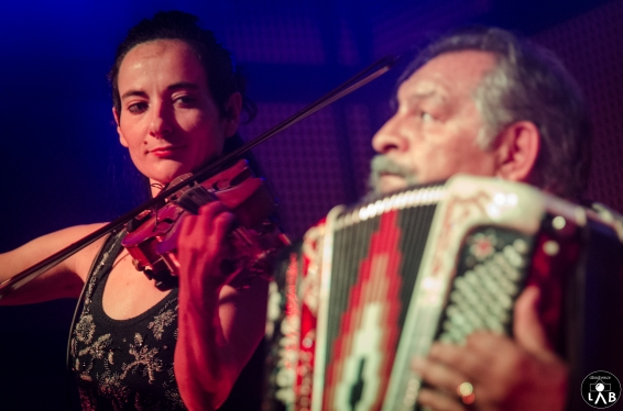 11 jovica-orkestar_diego-cantore_serraglio_19